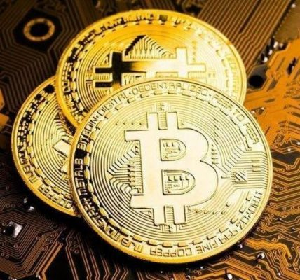 opinions of Some economists about bitcoin